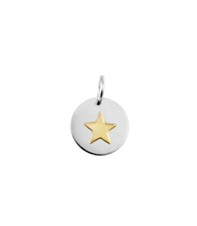 Silver pendant with gold...