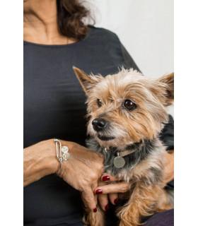 Dog leash personalized badge