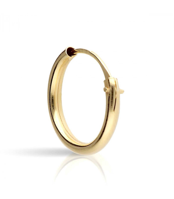 Small gold hoops earring